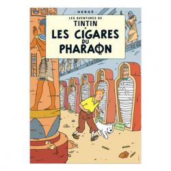 Poster - Les Cigares du...