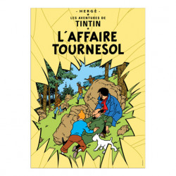 Poster – L'Affaire Tournesol