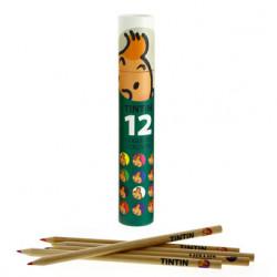 Tintin colouring pencils