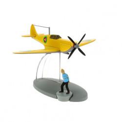 The Emir's yellow plane
