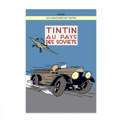 Poster - Tintin au pays des...