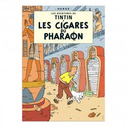 Carte Postale - Les Cigares...