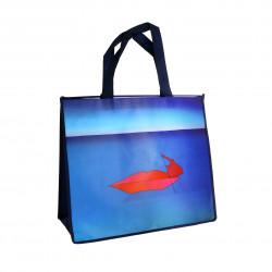 Large Folon Bag