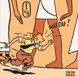 Calendrier Tintin 2022